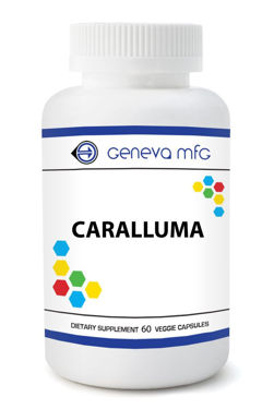 Picture of Caralluma
