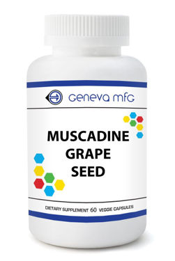 Picture of Muscadine Grape Seed