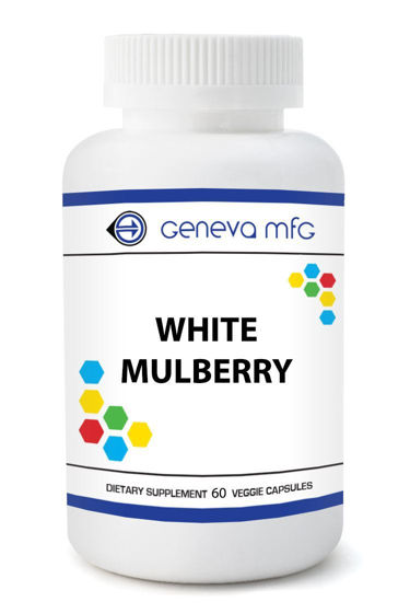 Picture of White Mulberry