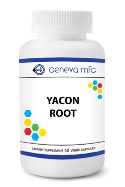 Picture of Yacon Root