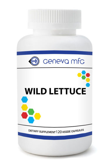 Picture of Wild Lettuce 120ct